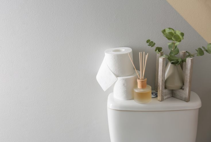 Decor elements and paper rolls on toilet tank near color wall, space for text. Bathroom interior