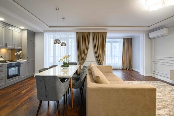 Large luxury contemporary studio apartment with classic kitchen and living room interior