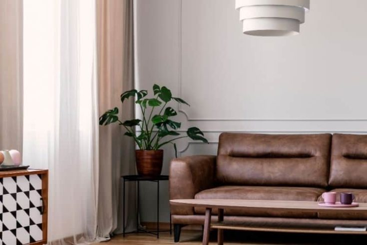 Real photo of leather lounge standing in bright living room interior