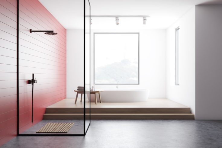 Interior of modern bathroom with red and white walls