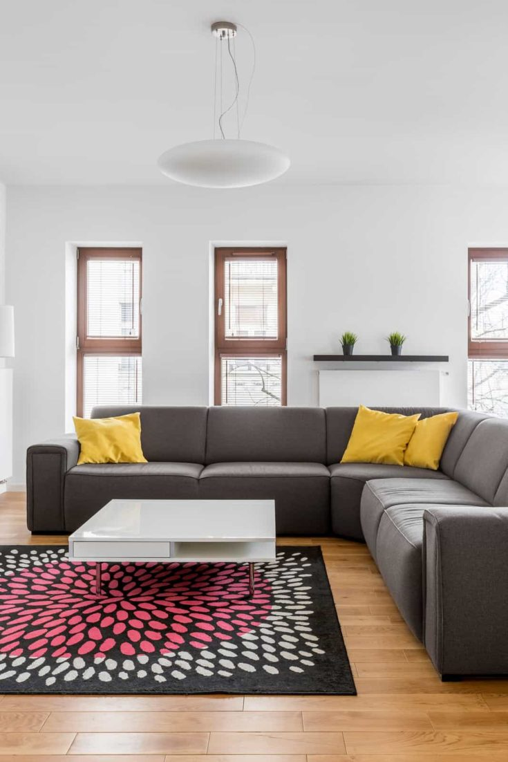 Comfortable corner couch in modern apartment living room