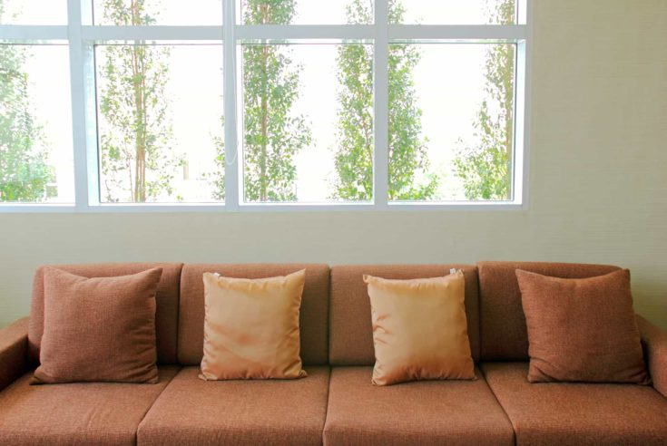 sofa in the living room with green plant outside the windows