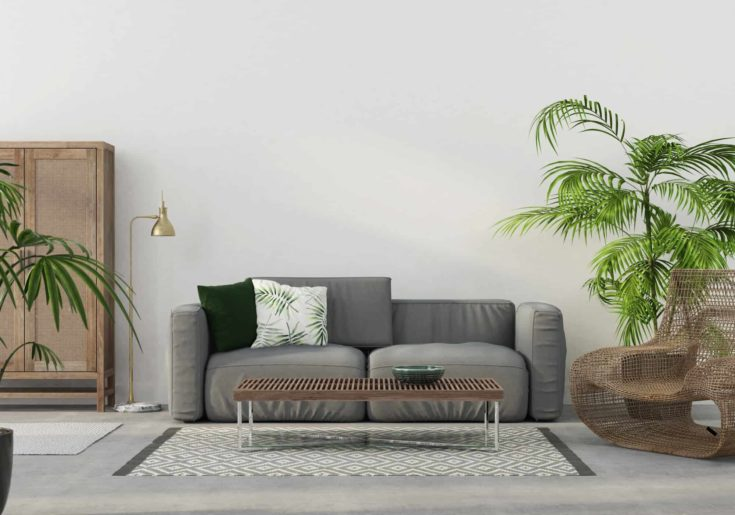 The interior of the living room with a gray sofa