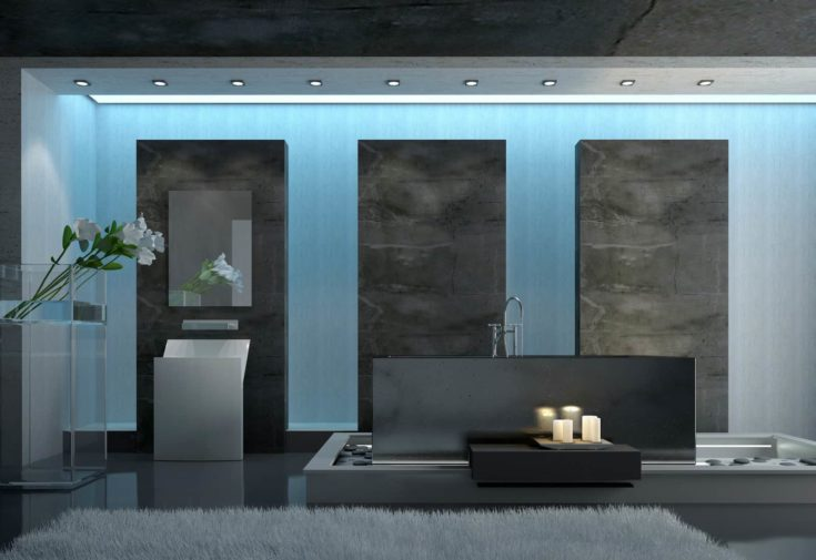 Contemporary Architectural Design of a Gray Bathroom with Gray Carpet on the Floor